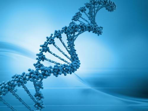 DNA-schizophrenia-gene